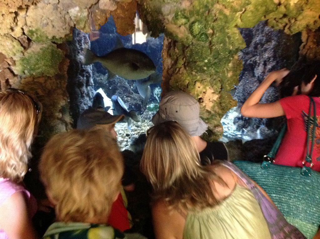 Аквариум на Родосе рыбы