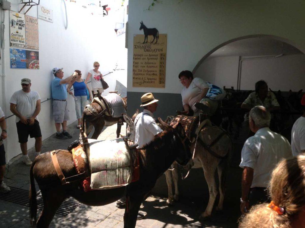 Линдос такси загон для осликов на острове Родос