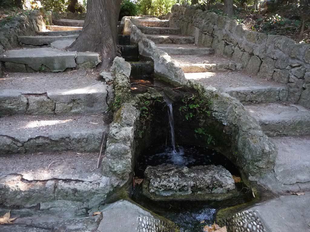 Ручей в парке Родини