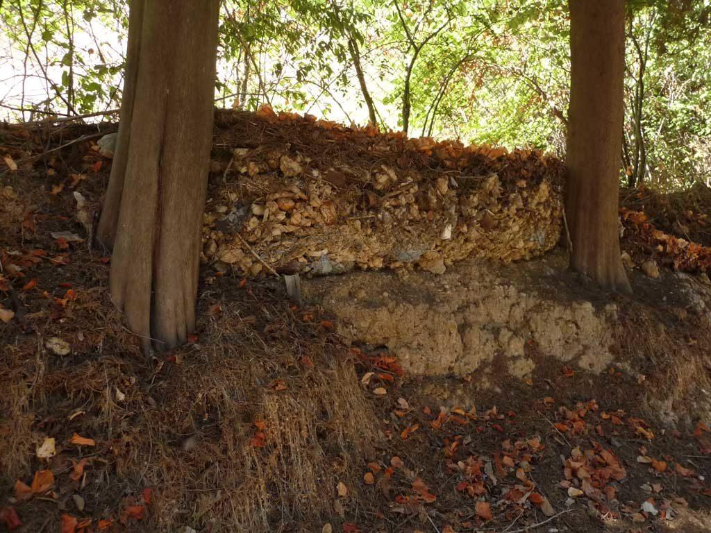 Борьба с осыпью в парке Родини