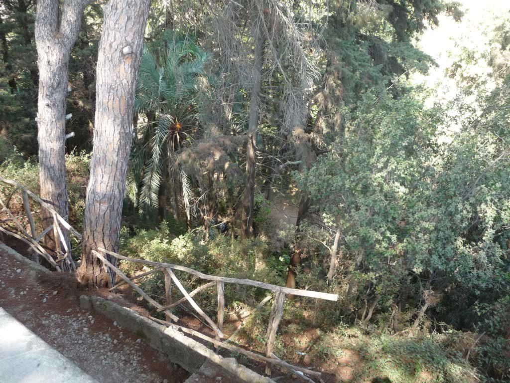 Овраг в парке Родини