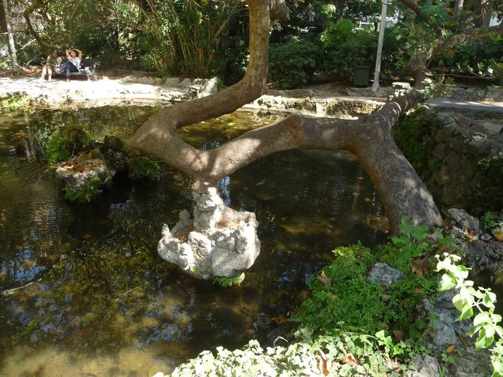 Озеро на входе в парк Родини