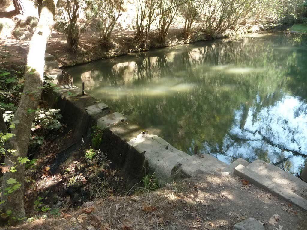 Дамба в парке Родини