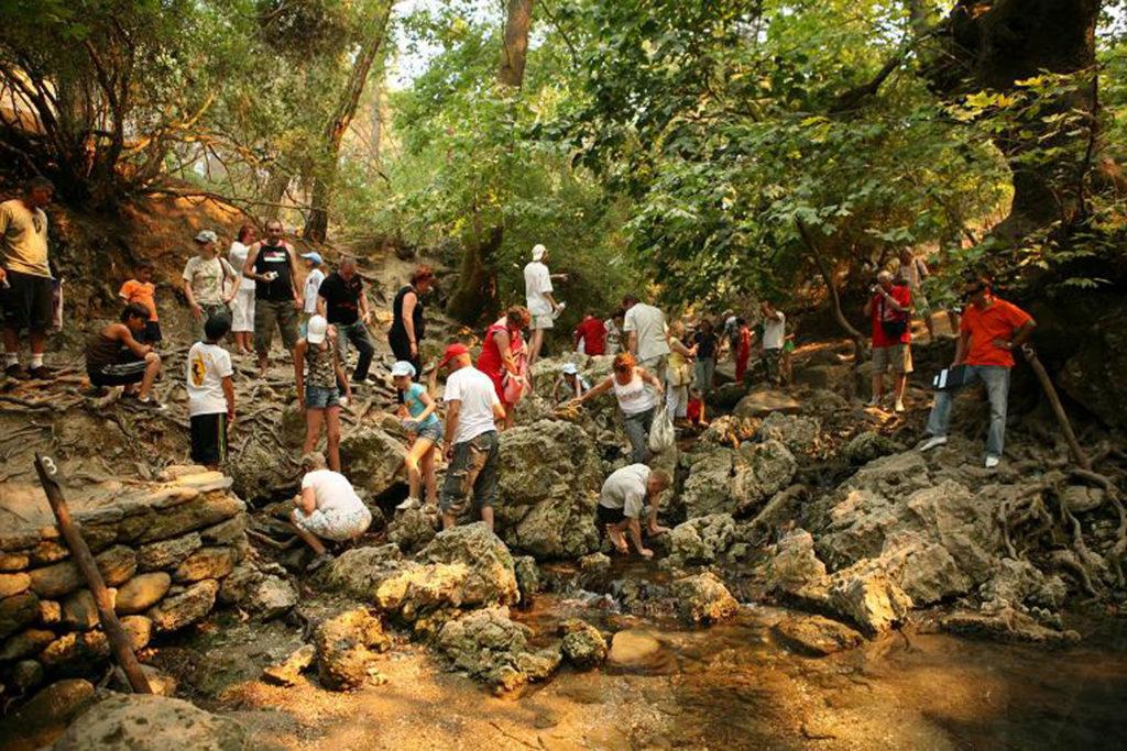Источник номер 3 в Заповеднике Семь источников на острове Родос