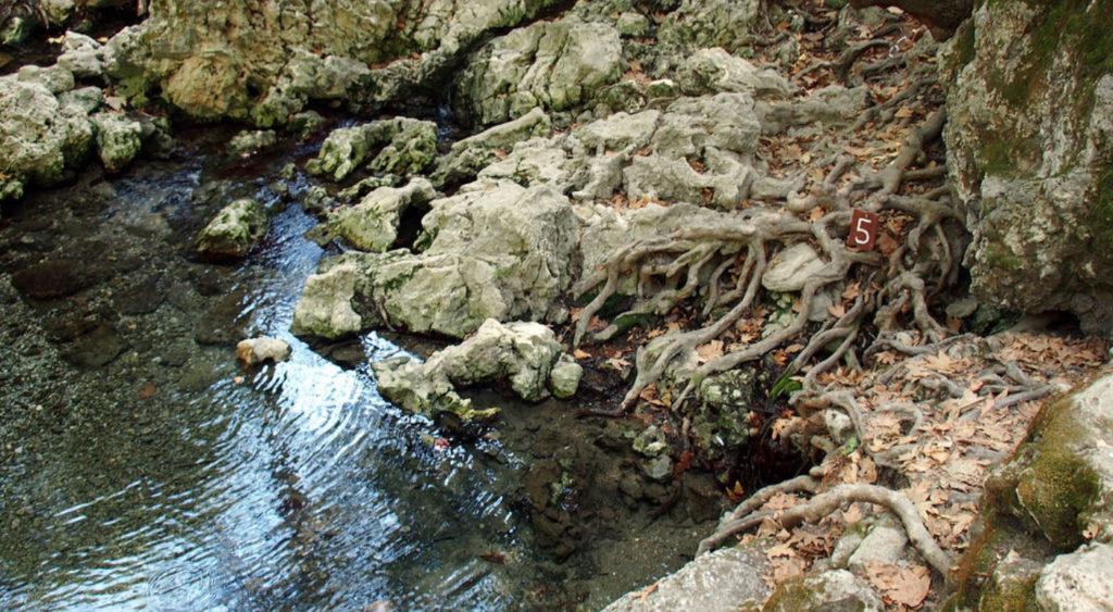 Источник номер пять в Заповеднике Семь источников на острове Родос
