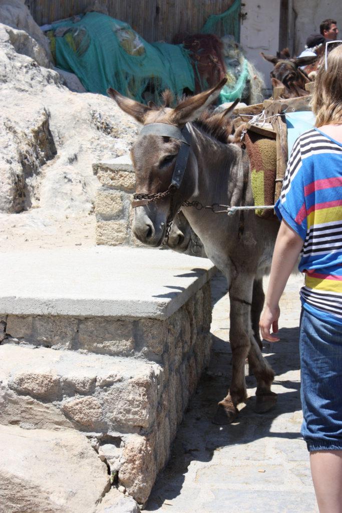 Линдос такси ослик на стоянке на острове Родос