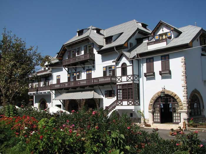 Отель Олень и Олениха
